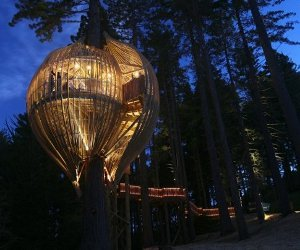 10 Amazing Examples of TreeHouse Archicture