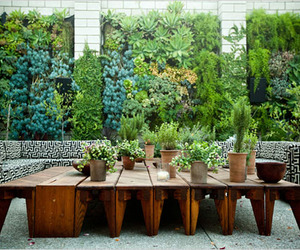10 Gorgeous Vertical Gardens