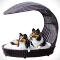 11 Great Pet Furniture Pieces
