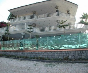 165 Foot Long Aquarium Fence