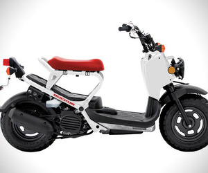 2013 Honda Ruckus