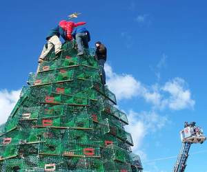 3 Amazing Recycled Christmas Tree Sculptures