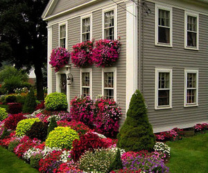 30 Landscape Design Ideas