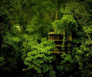 7 Amazing Ecotourism Escapes