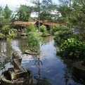 A Beautiful Garden Pond in Your Home