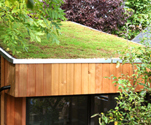 A living roof (sedum) - natural beauty from Roomworks