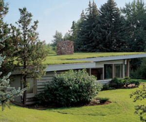 A Log Cabin In Montana By Richard Neutra
