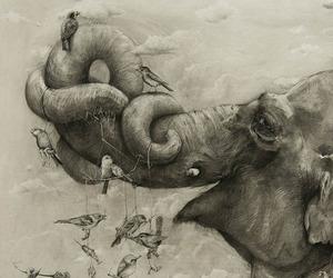 A Look At The 2012 ArtPrize Winner, 'Elephants'