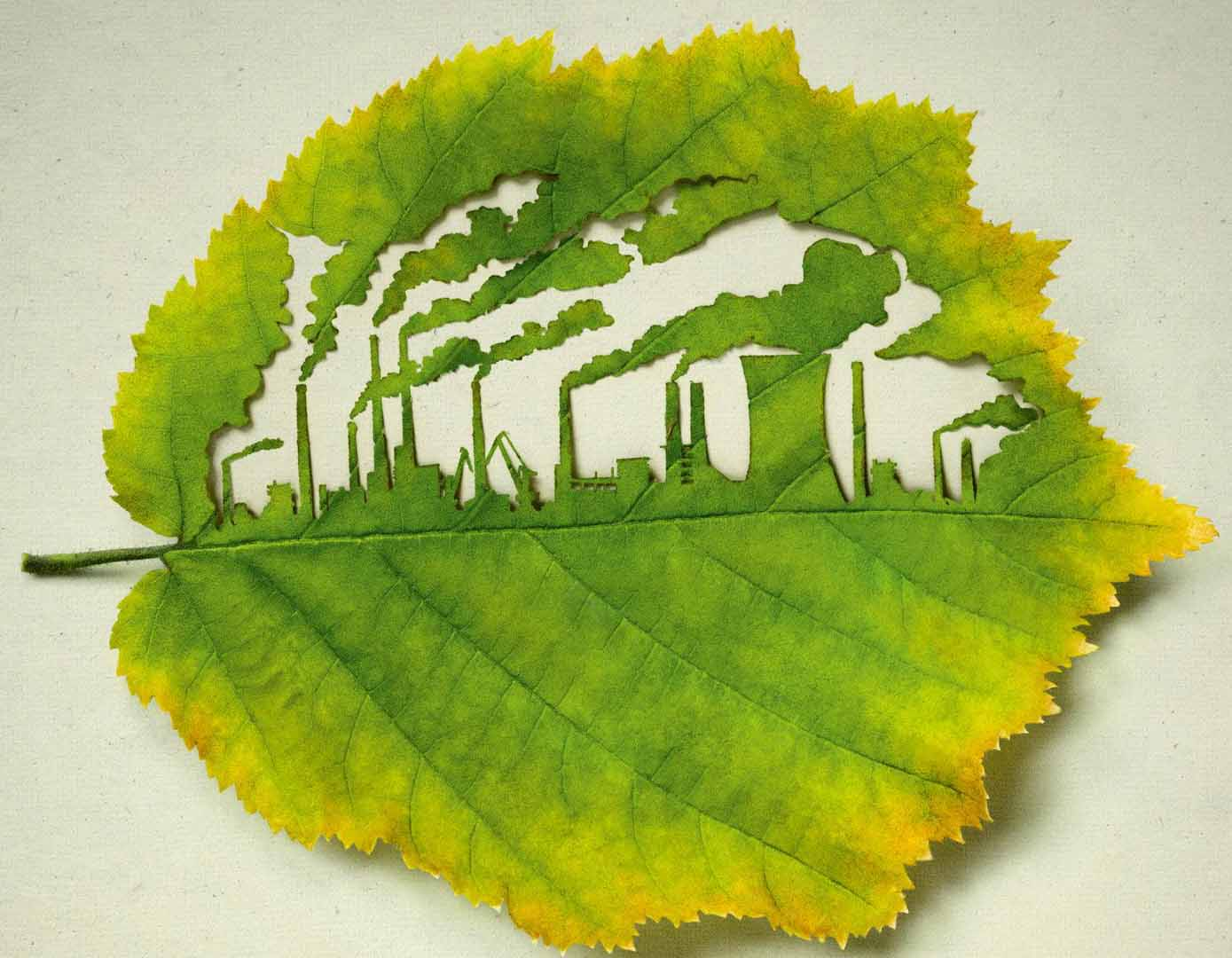 ad campaign for plant for the planet uses cut leaf art. Black Bedroom Furniture Sets. Home Design Ideas