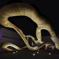 Lexus Design Amazing 2013 Exhibition
