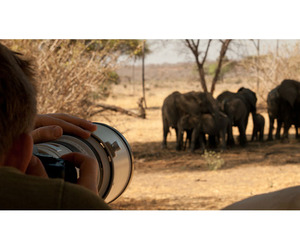 An Exclusive Tanzanian Photography Trip