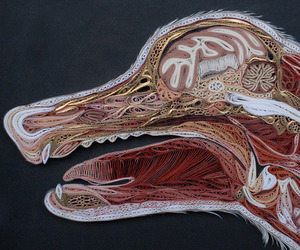 Anatomical Paper Sculptures by Lisa Nilsson