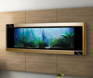 Aquavista Dino Gold Fish Tank Is World's Most Expensive