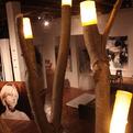 Arbor Lux Lighting Installation by Trevor O'Neil