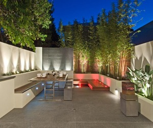 Award-winning Landscape Design in Paddington