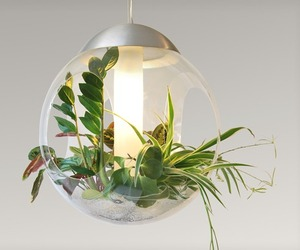 Babylone Pendant Light with Plants