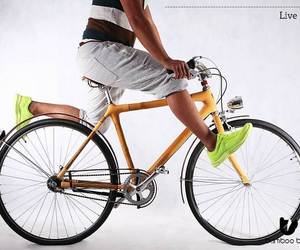Bamboo bee Bicycle