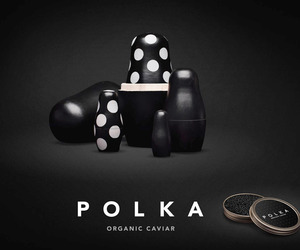 Beautiful Branding for Polka Organic Caviar