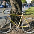 Berlin Bamboo Bike