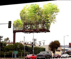 Billboards Converted into Bamboo Gardens