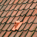 Birdhouse Roof Tile by Klaas Kuiken
