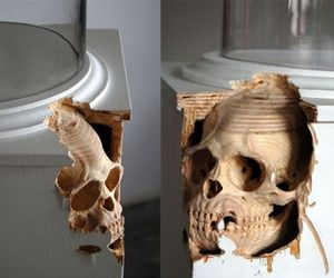 Bizarre Anatomical Sculptures