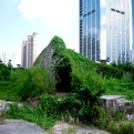 Bug Dome by WEAK! in Shenzhen