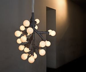 Bunch of Bulbs by Kilo Design