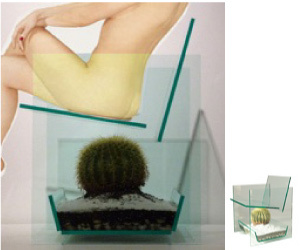 ... Cactus Chair U0027 ... Design Ideas