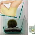 Cactus Chair