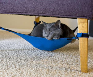 Cat Hammock by Cat Crib