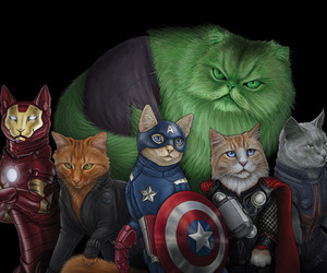 Cat Superhero Series