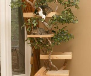 Cat Tree House By Big Apple Pet Supply