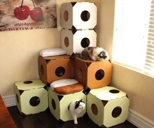 Catty Stacks Feline Abodes