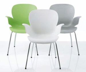 Chair Calixo