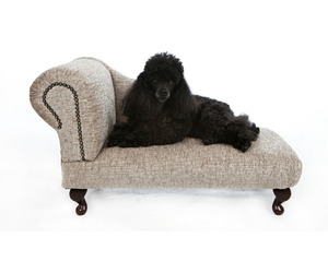 Chester & Wells Kensington Chaise Longue Dog Bed