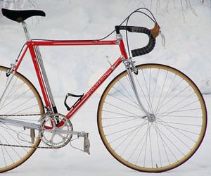 Colnago Arabesques Bike