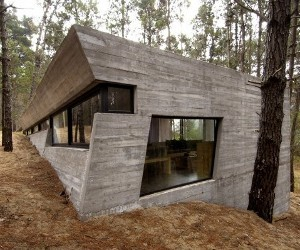Concrete Forest Home by BAK Arquitectos