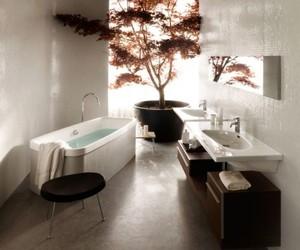 Contemporary Bathrooms by Laufen