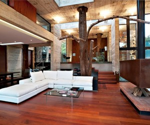 Tree Running Through this Contemporary Home in Guatemala