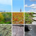 Convert is a NYC based Green Roof Service (and the site was designed by swissmiss!)