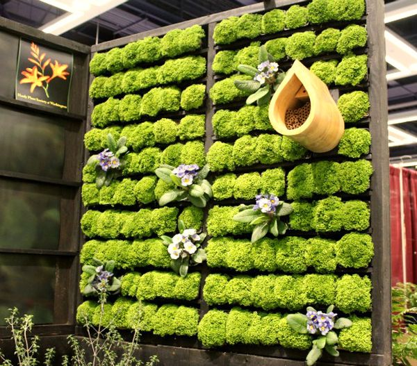 Cool diy green living wall projects for Fabriquer cadre vegetal mural