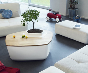Creative coffee tables featuring built-in plant pot