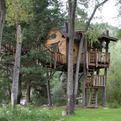 Crystal River Treehouse by Green Line Architects