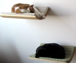 Curve wall-mounted cat beds by Akemi Tanaka