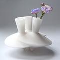 Dancing Vases by Robin van Hontem