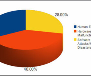 Data Loss Statistics