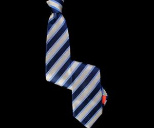 Denim & Navy Blue Striped Tie