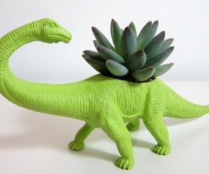 Dino Plant, Dinosaur Terrariums