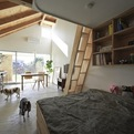 Dog Salon and Loft by Naoko Horibe